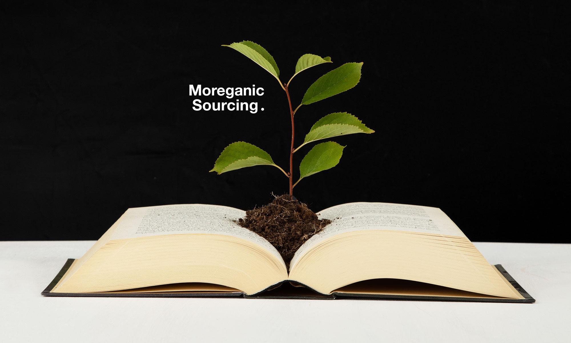 Moreganic Sourcing